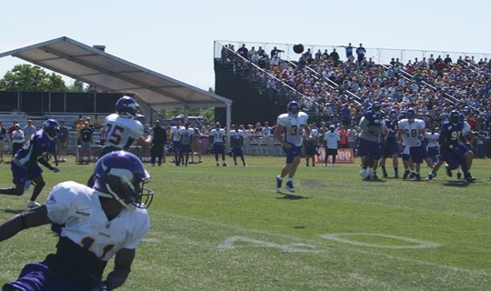 Photo of Greg Camarillo catching a pass during training camp